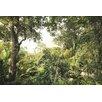 Komar Tapete Dschungel 248 cm L x 368 cm B