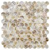 "EliteTile Shore 1"" x 1"" Seashell Mosaic Tile in Natural"