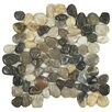EliteTile Brook Random Sized Natural Stone Polished Mosaic Tile in Multicolored