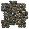 "EliteTile Brook 11.75"" x 11.75"" Natural Stone Mosaic Tile in Tiger Eye"