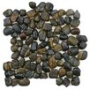 EliteTile Brook Random Sized Natural Stone Mosaic Tile in Tiger Eye
