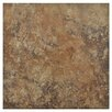 "EliteTile Skabos 14.19"" x 14.19"" Porcelain Floor and Wall Tile in Brown"