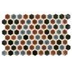 "EliteTile Genoa 9"" x 5.5"" Porcelain Field Tile in Bruno"