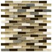 """EliteTile Sierra 0.5"""" x 1.875"""" Glass and Natural Stone Mosaic Tile in Nassau"""