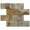 EliteTile Peak 2.88'' x 5.88'' Natural Stone Mosaic Tile in Multi