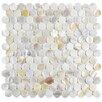 "EliteTile Shore 1"" x 1"" Seashell Mosaic Tile in White"