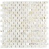 "EliteTile Shore 0.56"" x 0.88"" Seashell Mosaic Wall Tile in White"