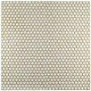 """EliteTile Penny 0.75"""" x 0.75"""" Porcelain Mosaic Tile in Snowcap White"""
