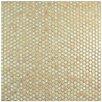 "EliteTile Penny 0.75"" x 0.75"" Porcelain Mosaic Tile in Truffle"
