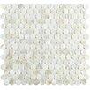 """EliteTile Shore 0.75"""" x 0.75"""" Mini Penny Seashell Mosaic Tile in White"""