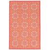 Liora Manne Playa Orange Indoor/Outdoor Area Rug