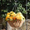 Hyde Park Steel Hanging Planter - Size: 7 inch High x 12 inch Wide x 12 inch Deep - Color: White - Griffith Creek Designs Planters
