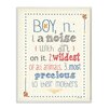 Stupell Industries The Kids Room Definition of Boy (n): A Noise with Dirt on It Typography Wall Plaque