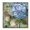 Stupell Industries 'Colorful Hydrangeas with Antique French Backdrop' by The Art Licensing Group Textual Art
