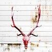 Parvez Taj Hot Temper - Art Print on White Pine Wood