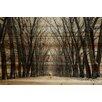 "Parvez Taj Landscape & Nature ""Tree Path"" Painting Print"