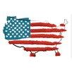 Secretly Designed 'United States Flag' Graphic Art