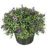 Winward Designs Wild Violet Desk Top in Planter