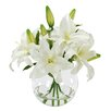 Winward Designs Casablanca Lily Bouquet in Glass Vase