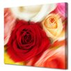 Menaul Fine Art 'Roses' by Scott J. Menaul Graphic Art on Wrapped Canvas
