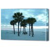 Menaul Fine Art 'Beach Trees' by Scott J. Menaul Photographic Print on Wrapped Canvas