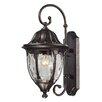 Elk Lighting Glendale 1 Light Outdoor Wall Lantern