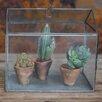 Nkuku Miro 0.3 x .02m Mini Greenhouse