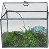 Nkuku Miro 0.2 x 0.2m Mini Greenhouse