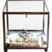 Creative Co-Op Sonoma Square Brass and Glass Display Box