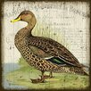 Vintage Signs 'Duck 2' by Suzanne Nicholl Graphic Art Plaque