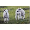 Fallen Fruits Lambs Printed Doormat