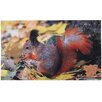 Fallen Fruits Best for Boots Squirrel Printed Doormat