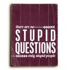 Artehouse LLC Stupid Questions by Cheryl Overton Textual Art Plaque