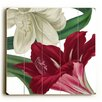 Artehouse LLC White and Red Flowers Graphic Art Plaque