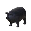 Transpac Imports, Inc Farm to Table Resin Pig Black Chalkboard