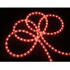 Vickerman Co. Indoor/Outdoor Christmas Rope Light