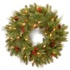 "National Tree Co. Noelle 24"" Pre-Lit Wreath"