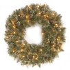 National Tree Co. Glittery Bristle Pine Wreath with 50 Clear Lights