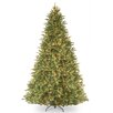 National Tree Co. Tiffany Fir 9' Green Artificial Christmas Tree with 1050 Clear Lights and Stand