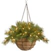 National Tree Co. Tiffany Fir Pre-Lit Round Hanging Basket