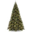 National Tree Co. Tiffany Fir 12' Green Artificial Christmas Tree with 1400 Clear Lights and Stand