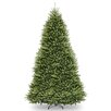 National Tree Co. Dunhill Fir 12' Hinged Green Artificial Christmas Tree and Stand