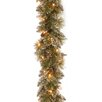 National Tree Co. Glittery Bristle Pine Garland