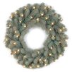 National Tree Co. Colorado Spruce Pre-Lit Feel-Real Frosted Wreath with 50 Clear Lights