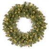 National Tree Co. Downswept Douglas Feel Real® Fir Wreath with 50 Clear Lights