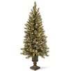 National Tree Co. Glittery Bristle Pine 4' Green Artificial Christmas Tree with LED Warm White Lights