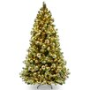 "National Tree Co. Wintry Pine Pre-lit 7"" Pine Artificial Christmas Tree with 650 Clear Lights and Stand"