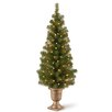 National Tree Co. Montclair Spruce 4' Green Artificial Christmas Tree with 50 Colored & Clear Lights
