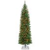 National Tree Co. Kingswood 6.5' Green Fir Pencil Artificial Christmas Tree with Multi-Colored Lights