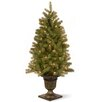 """National Tree Co. Downswept Douglas Fir 4"""" Green Fir Entrance Artificial Christmas Tree with 100 Pre-Lit Clear Lights with Urn Base"""